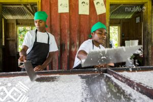 Trocknen von Kokosnüssen