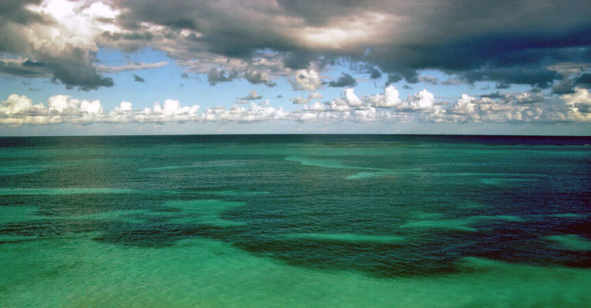 Onderzoek naar de verzuring van de oceanen door vervuiling en CO2