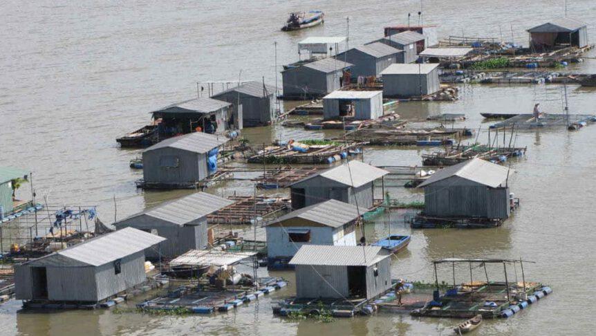 Visboerderij in Vietnam: vis eten niet gezond i.v.m. microplastics, hormonen en overbevissing