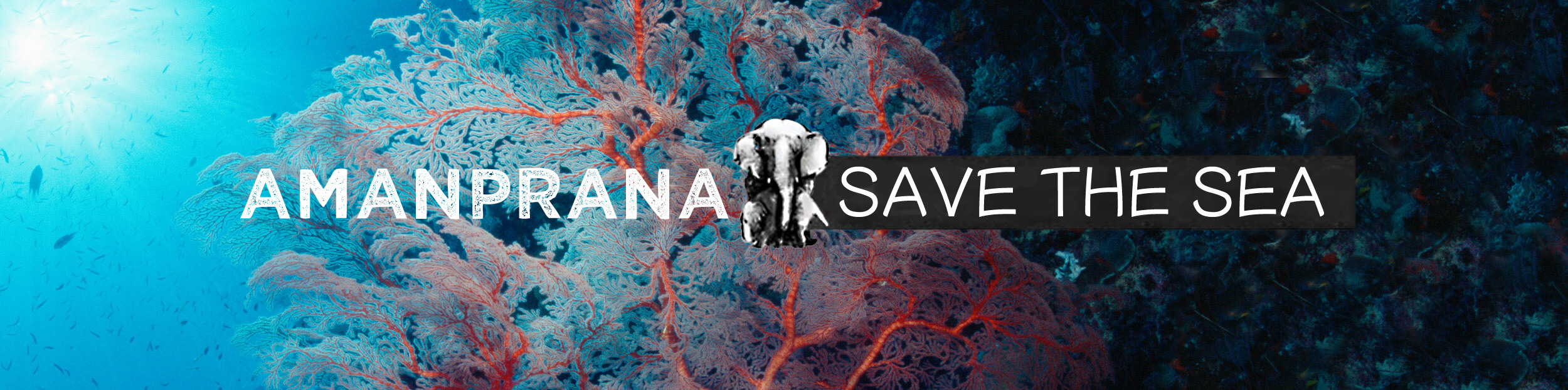 Save the Sea with Amanprana & strive for clean oceans, coasts