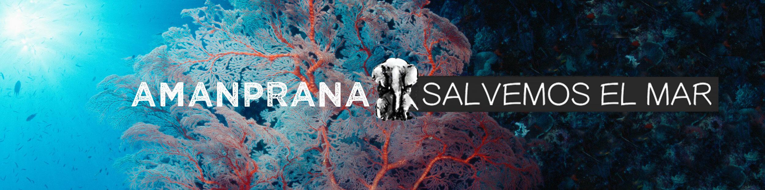 Salva el mar con Amanprana y esfuérzate por mantener limpios los océanos y las costas