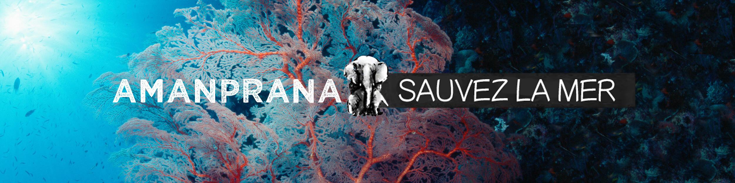 Sauvez la mer avec Amanprana et aspirez à la propreté des océans et des côtes