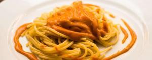Dinkelnudeln serviert mit Soße und etwas extra Soße als Garnierung auf dem Teller